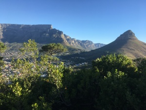 View of Table Mountain and Lions Head